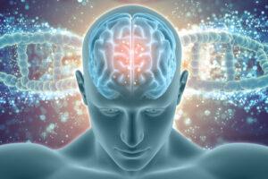 WashU, Pitt awarded $10.7 million for Alzheimer's disease research